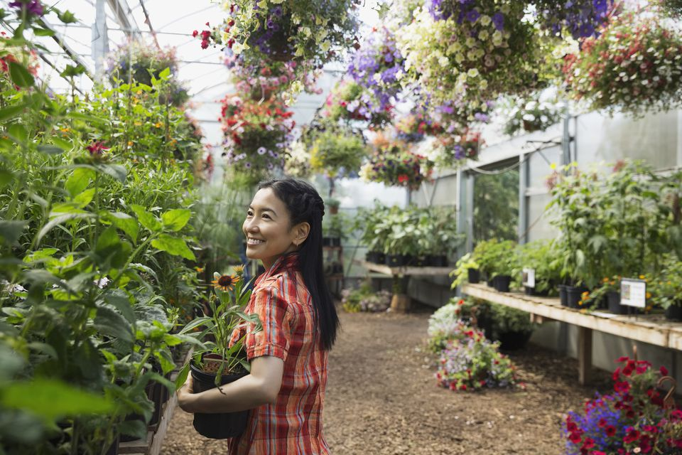 Smiling Woman With Flowers In Plant Nursery Greenhouse