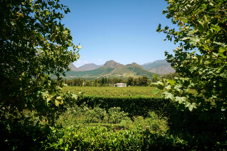 West Coast Wineries