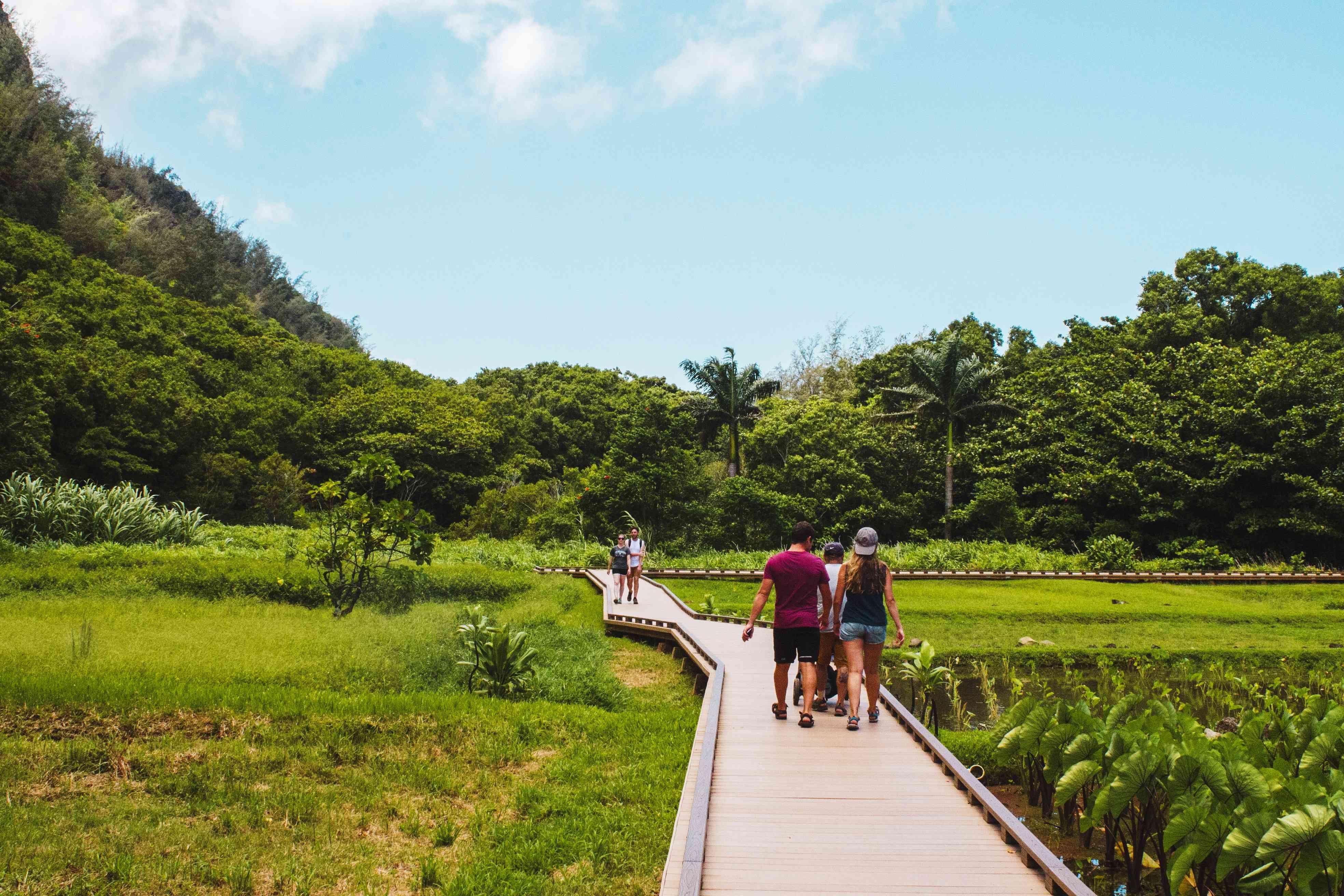 Walking path through Haena State Park