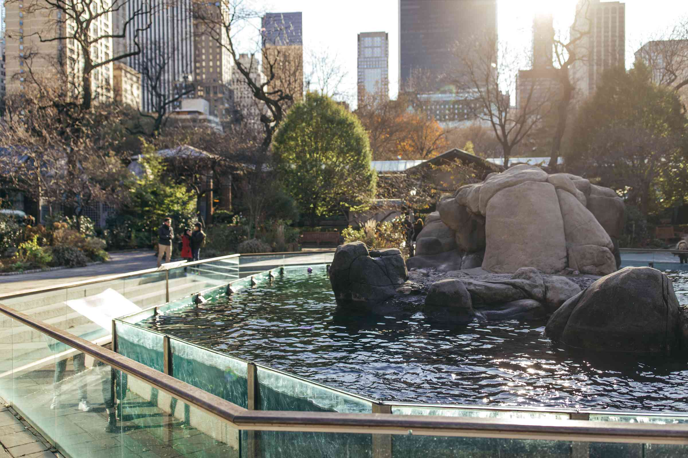 Central Park Zoo in NYC