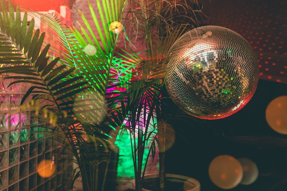 Three potted palm plants in a darkened room with a disco ball on the right of the plants