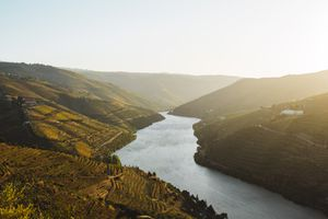 The Douro river curving around the valley and vineyards