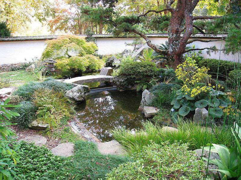 Japanese Garden at Atlanta Botanical Gardens