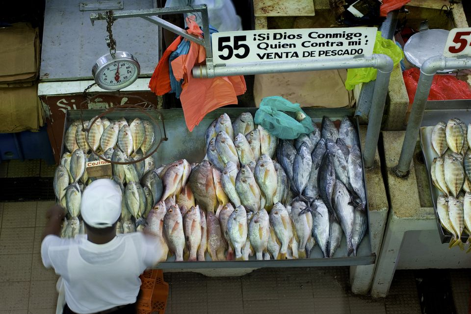 Panama City market
