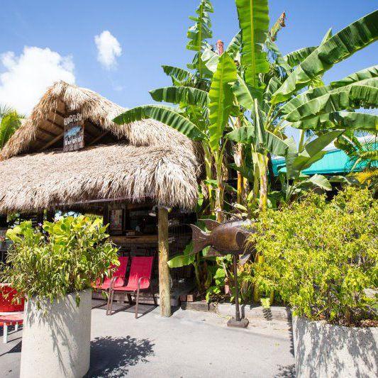 The 8 Best Restaurants in Key West