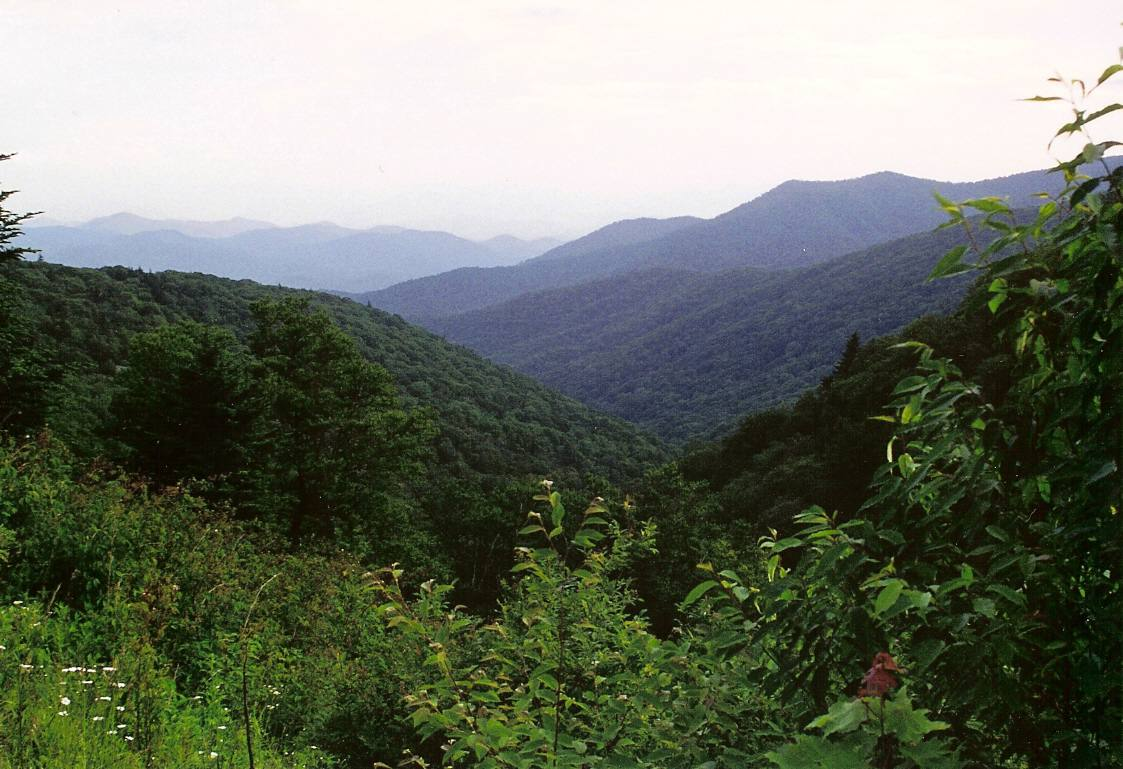 smoky mountains view