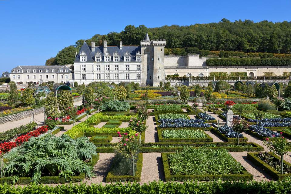 Villandry Garden, Loire Valley