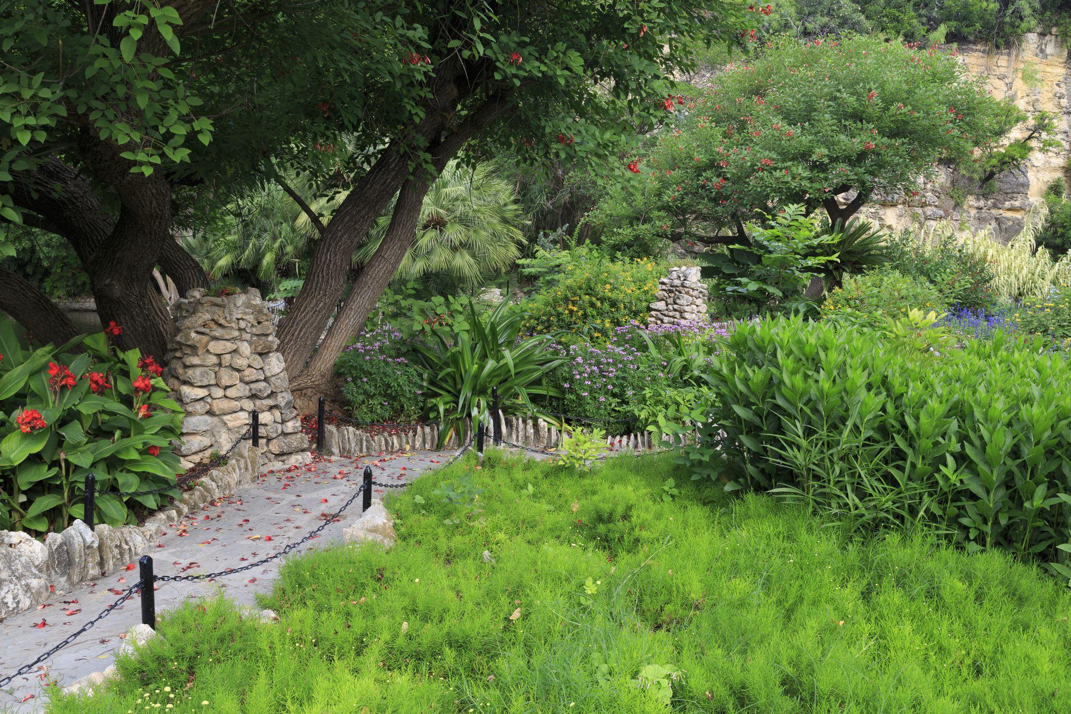 Jardín de Té Japonés en el Parque Brackenridge
