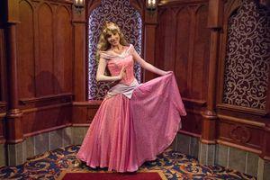 Meeting a Princess at the Fantasy Faire