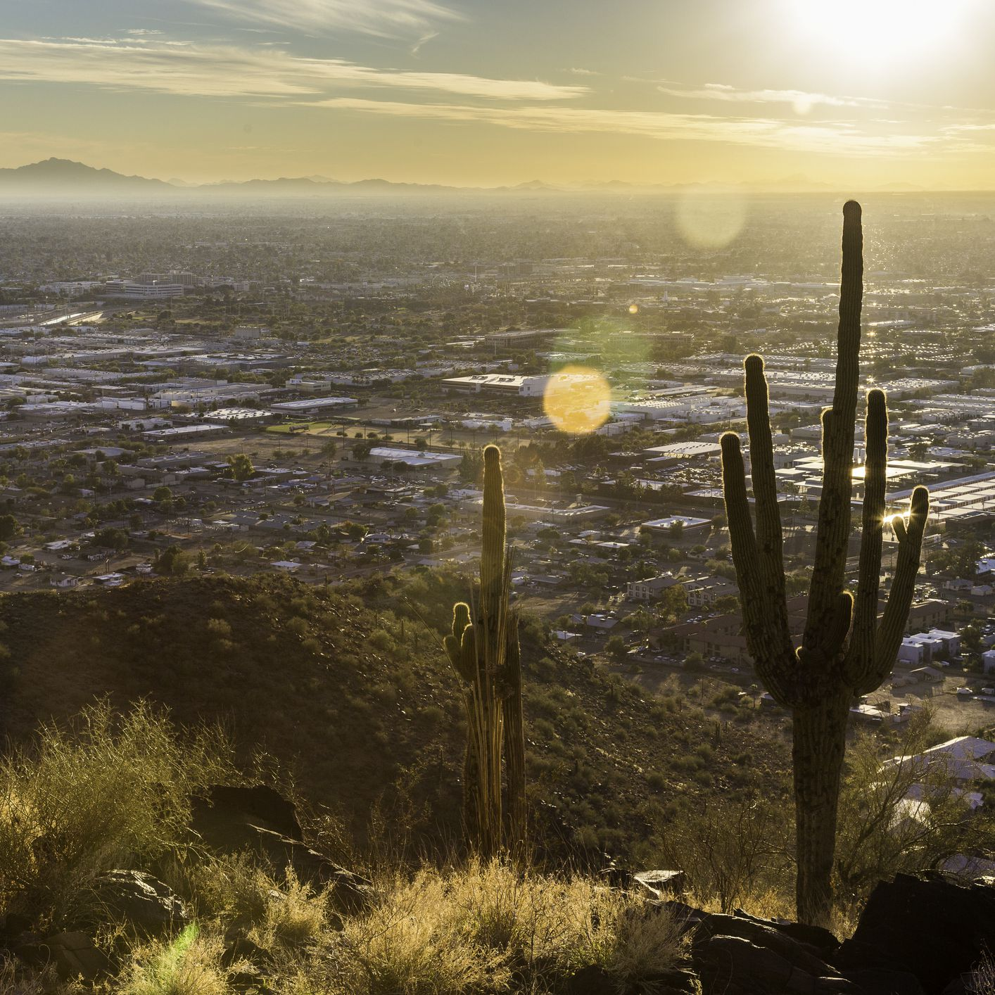 The Best Time to Visit Phoenix