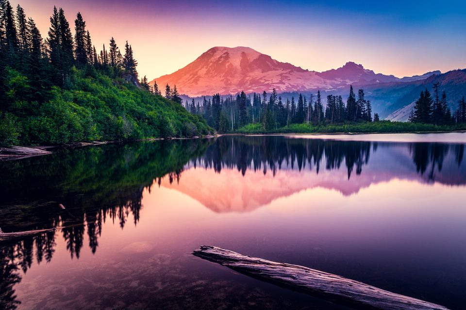 Mt Rainier National Park, Washington, America, USA