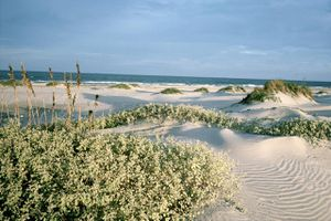 South Padre Island, TX
