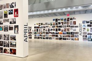 Art gallery walls covered in small color photographs with