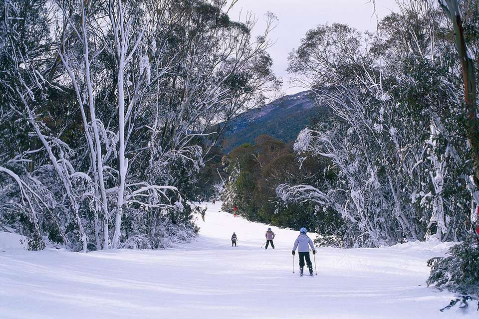 Ski trail down to Friday Flat, Thredbo, New South Wales