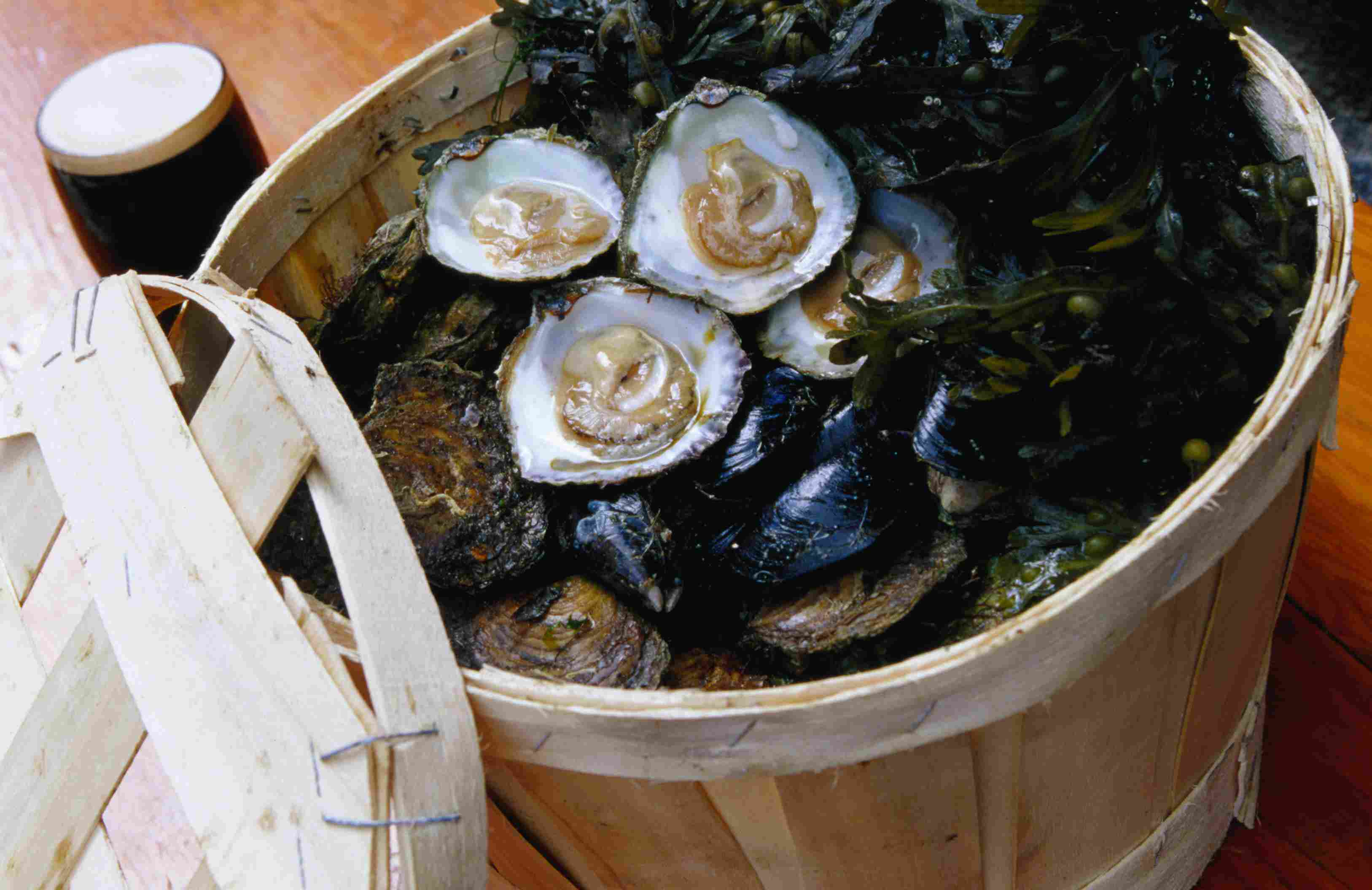 Galway oysters in Ireland