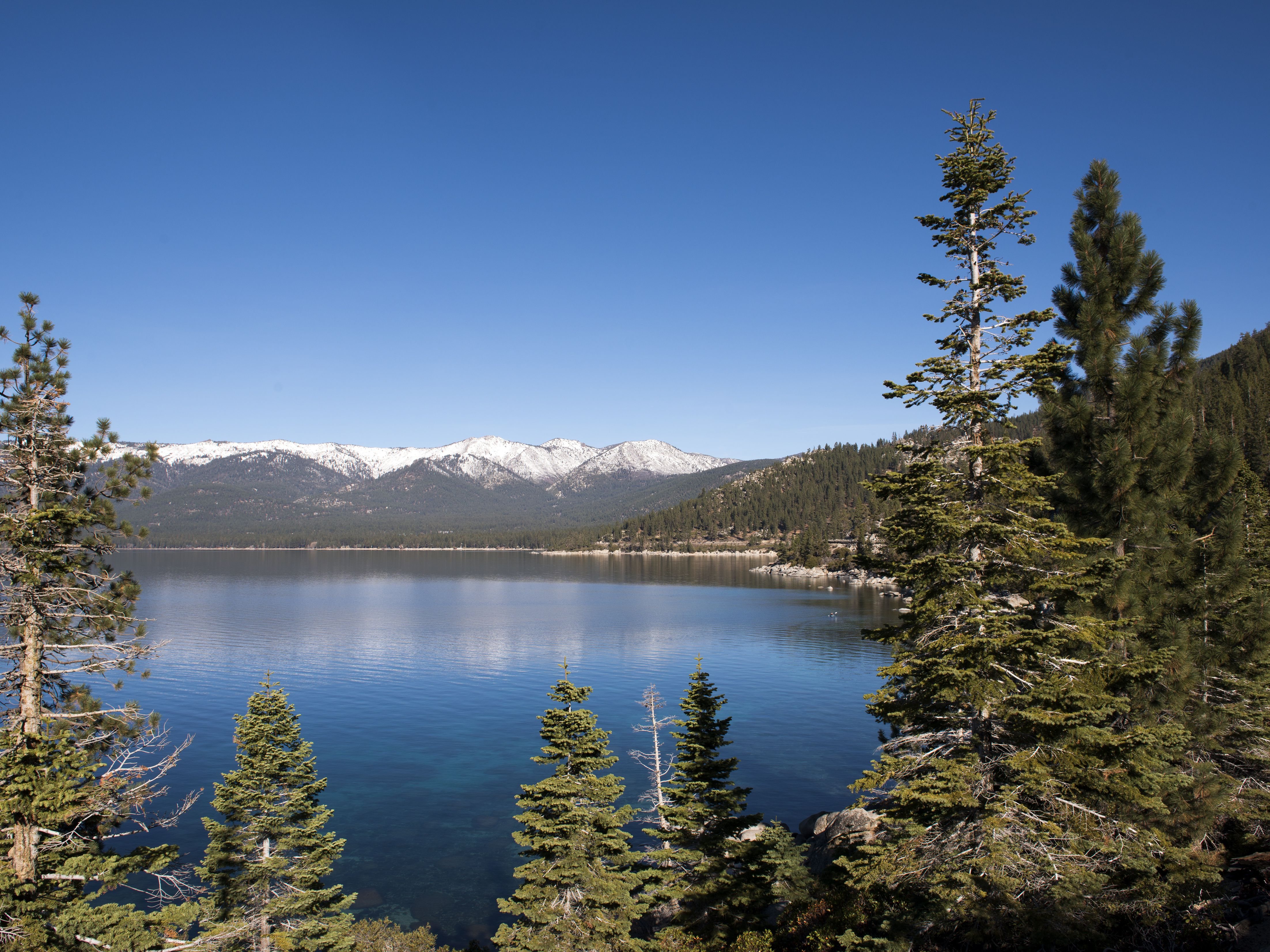 Lake Tahoe Weddings: Ideas, Legal Requirements, Places
