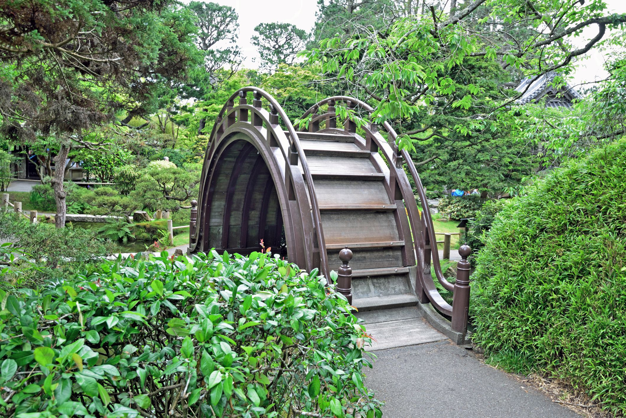 A Guide To The Japanese Tea Garden In Golden Gate Park
