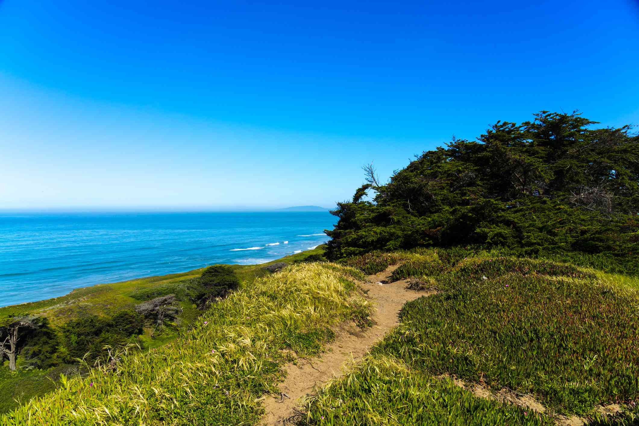 A trail at Thornton State Beach in Daly City