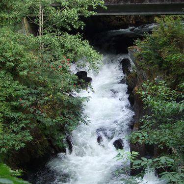 Fish Ladder up Ketchikan Creek in Ketchikan, Alaska