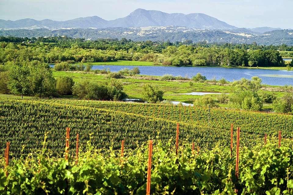 Sonoma Northern California S Most Wine Region