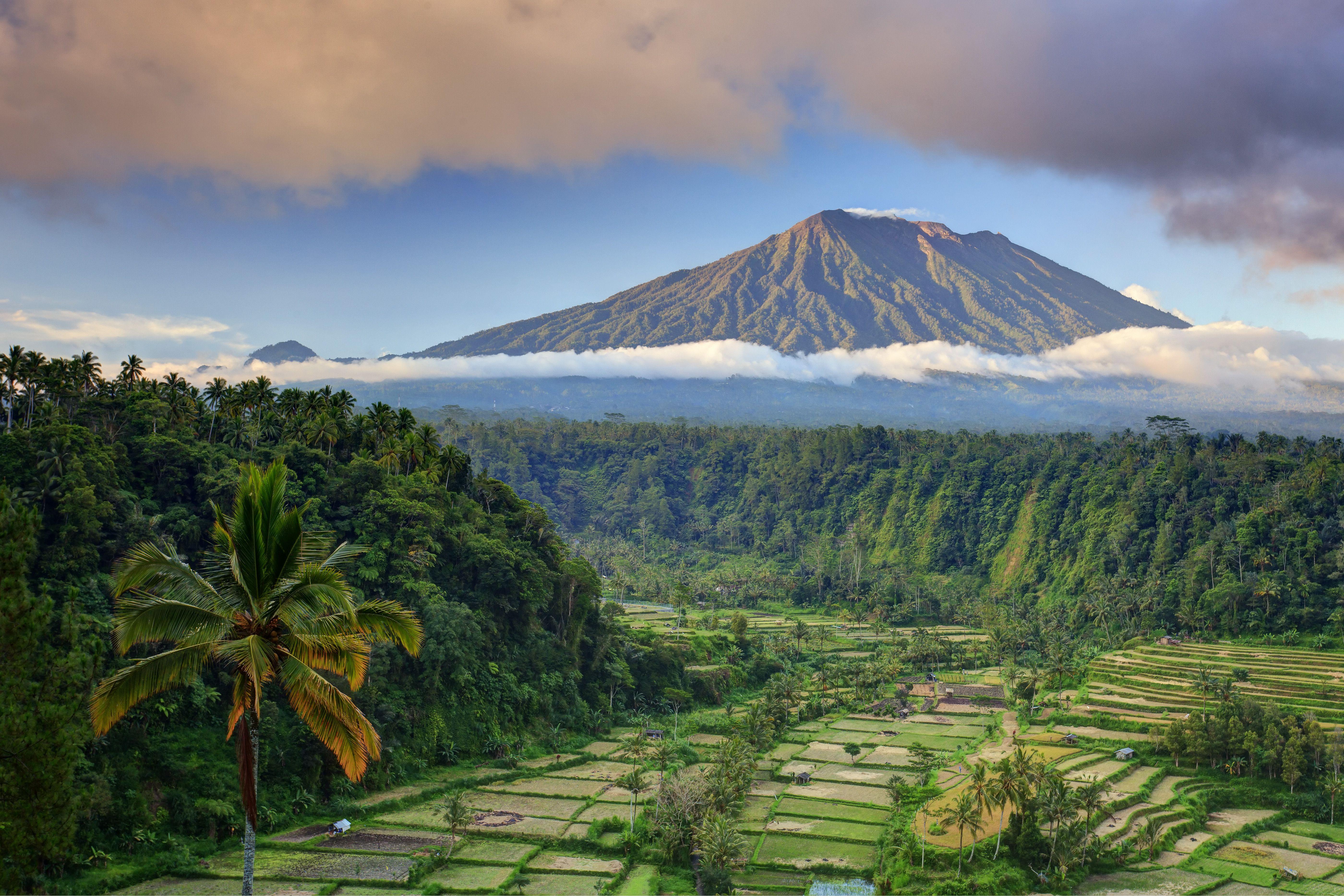 Volcano in Bali overlooks rice paddies