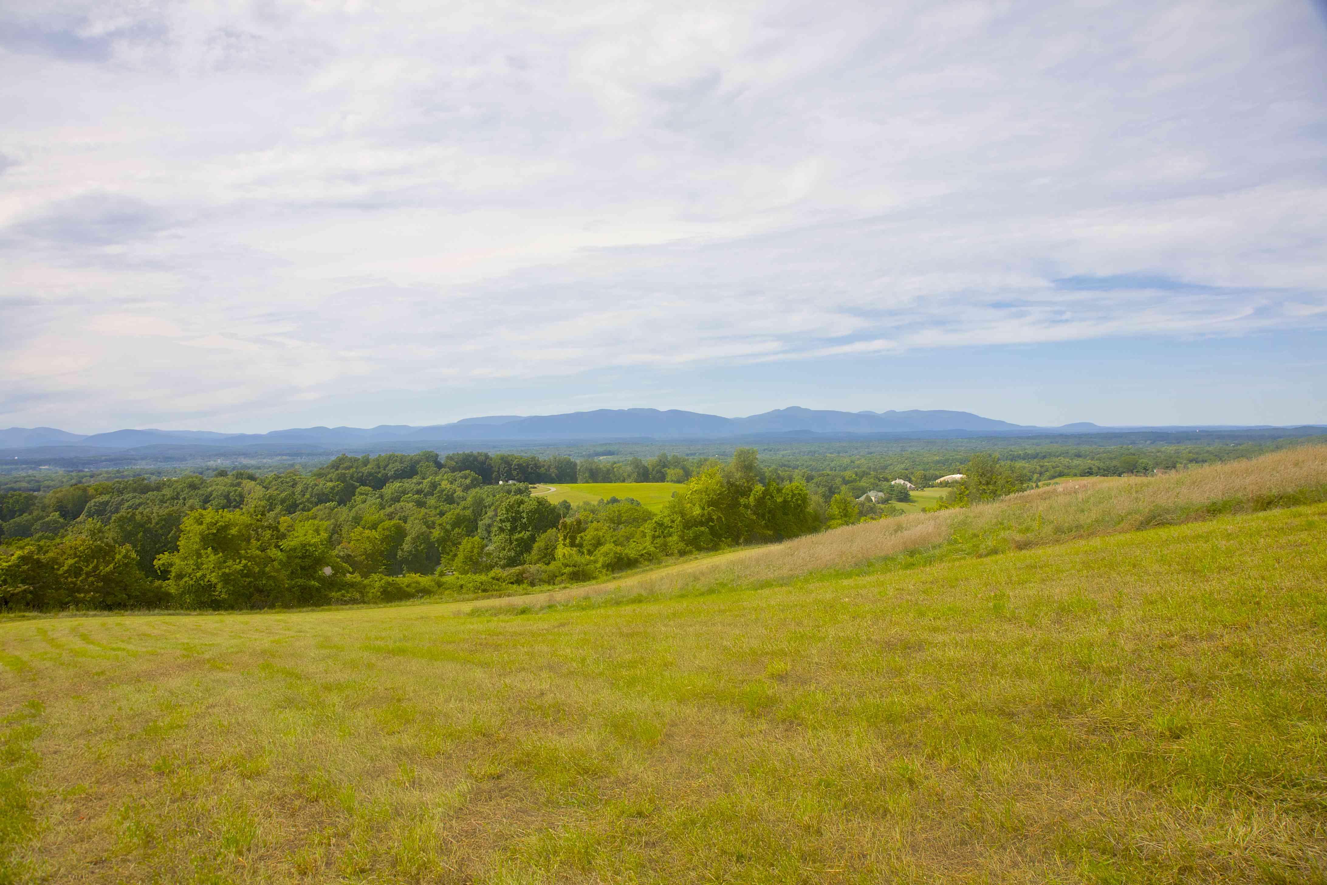 Hillside, trees and Catskill Mountains from Drayton Grant Park at Burger Hill, near Rhinebeck, NY