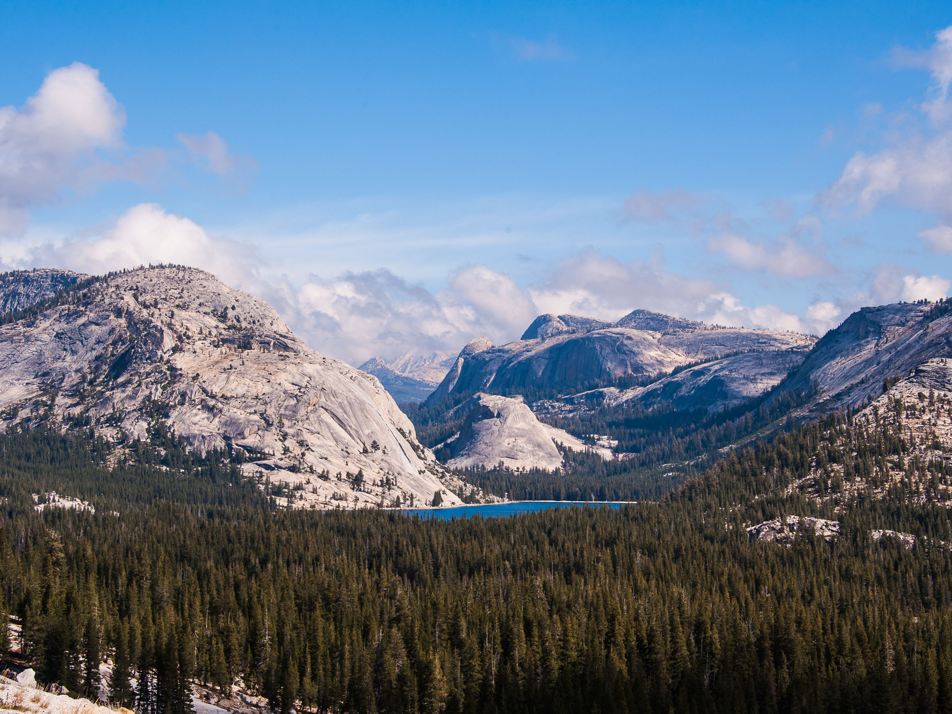 Tioga Pass in Yosemite