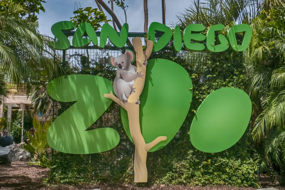 Welcome to the San Diego Zoo