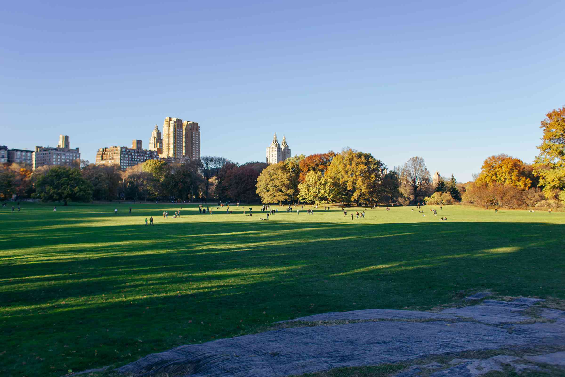 Sheep Meadow in Central Park in NYC