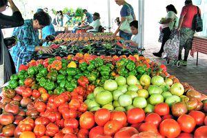 14th and U Farmers Market
