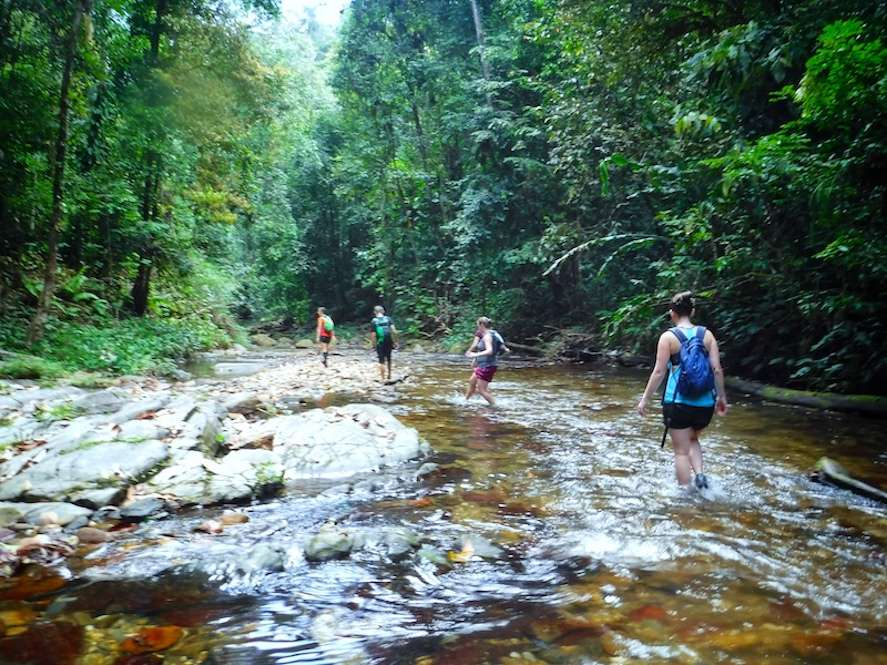 A group of hikers in Guanapo Gorge in Trinidad