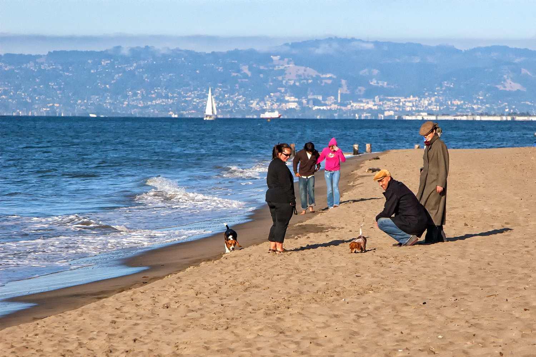 View of Berkeley from beach