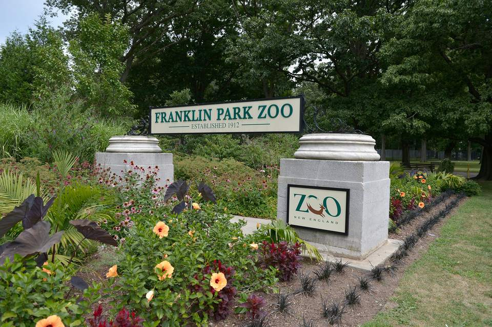 A general view of Boston's Franklin Park Zoo on August 18, 2013 in Boston, MA