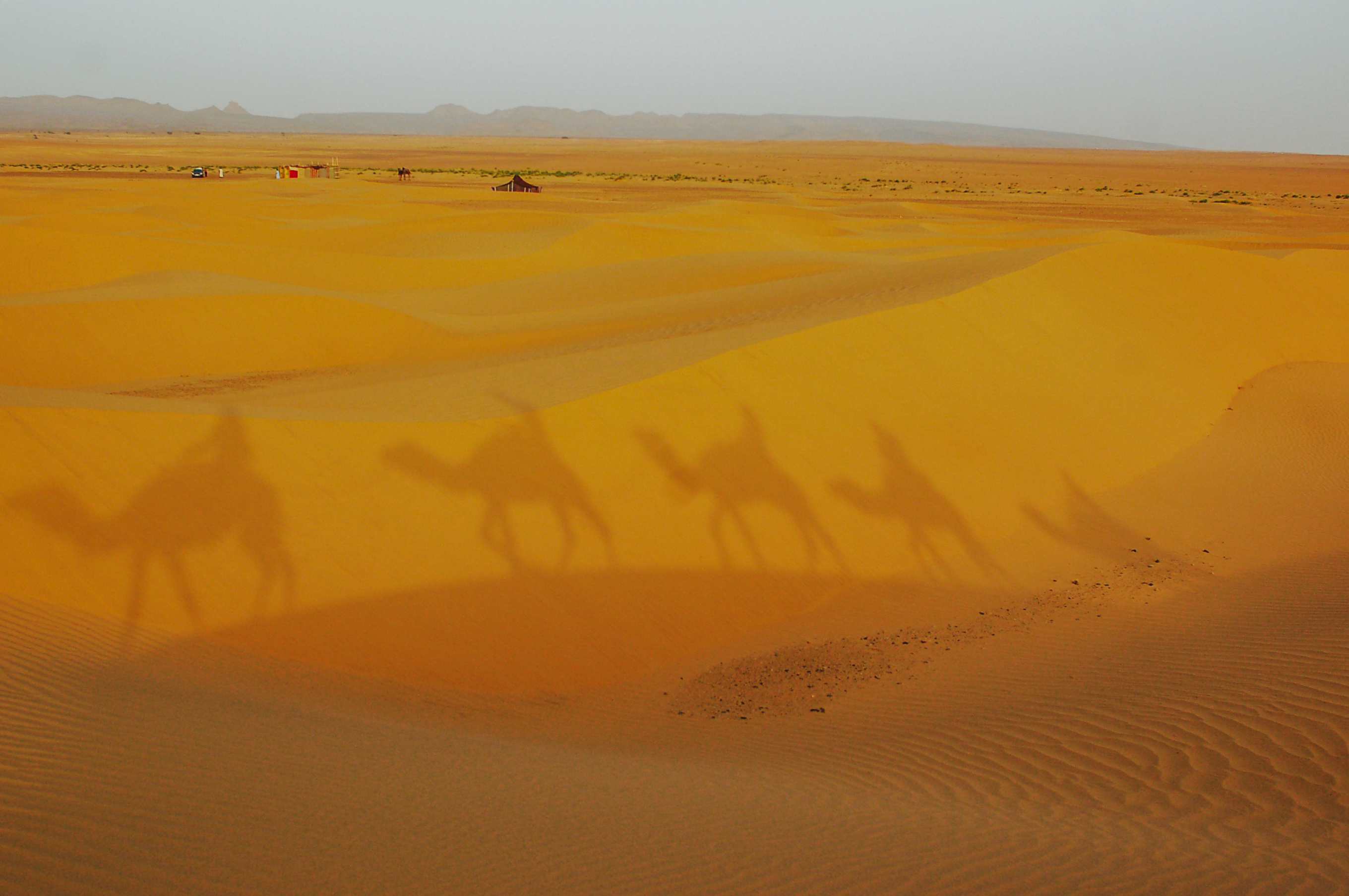 Shadows of people riding camels on the sand in the desert