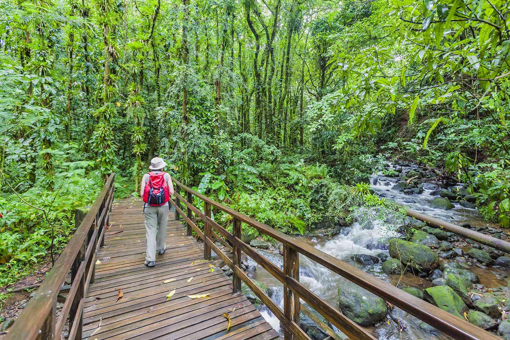 Vermont Nature Trail, St. Vincent