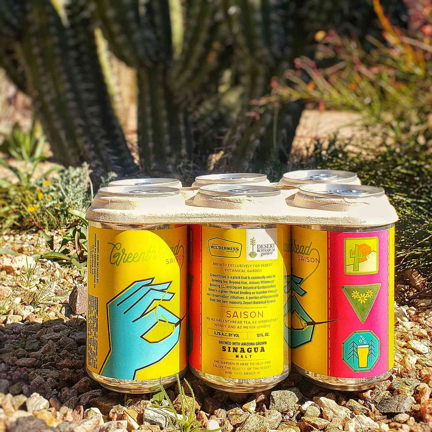 A six pack of Greenthread Saison from Arizona Wilderness Brewing Company sitting in front of a cactus