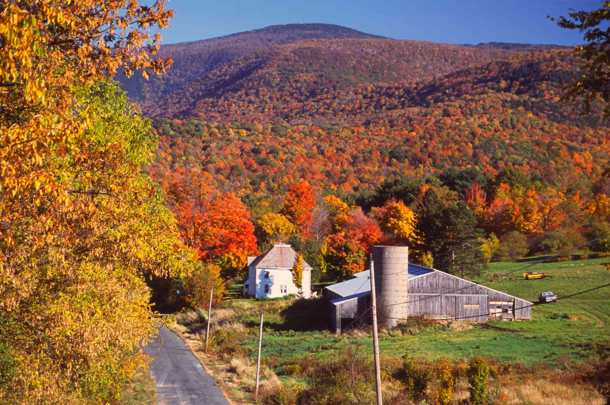 farmhouse with a mountain forest in the background with fall foliage