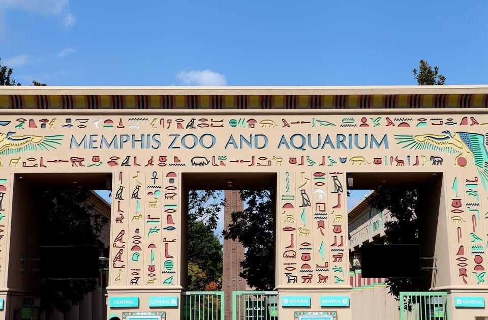 Memphis Zoo Animals