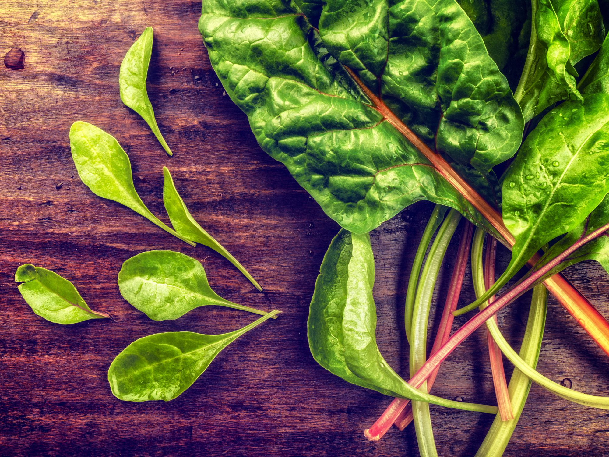 Vegetables and Herbs to Grow in Your Seattle Garden