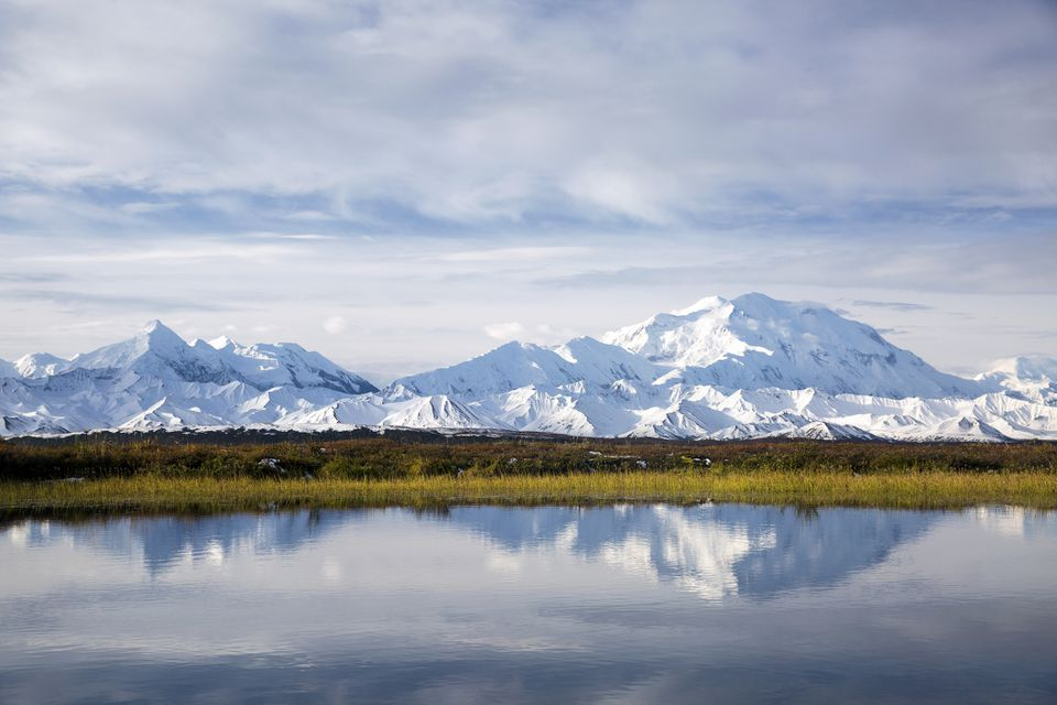 Denali reflection in Tundra pond
