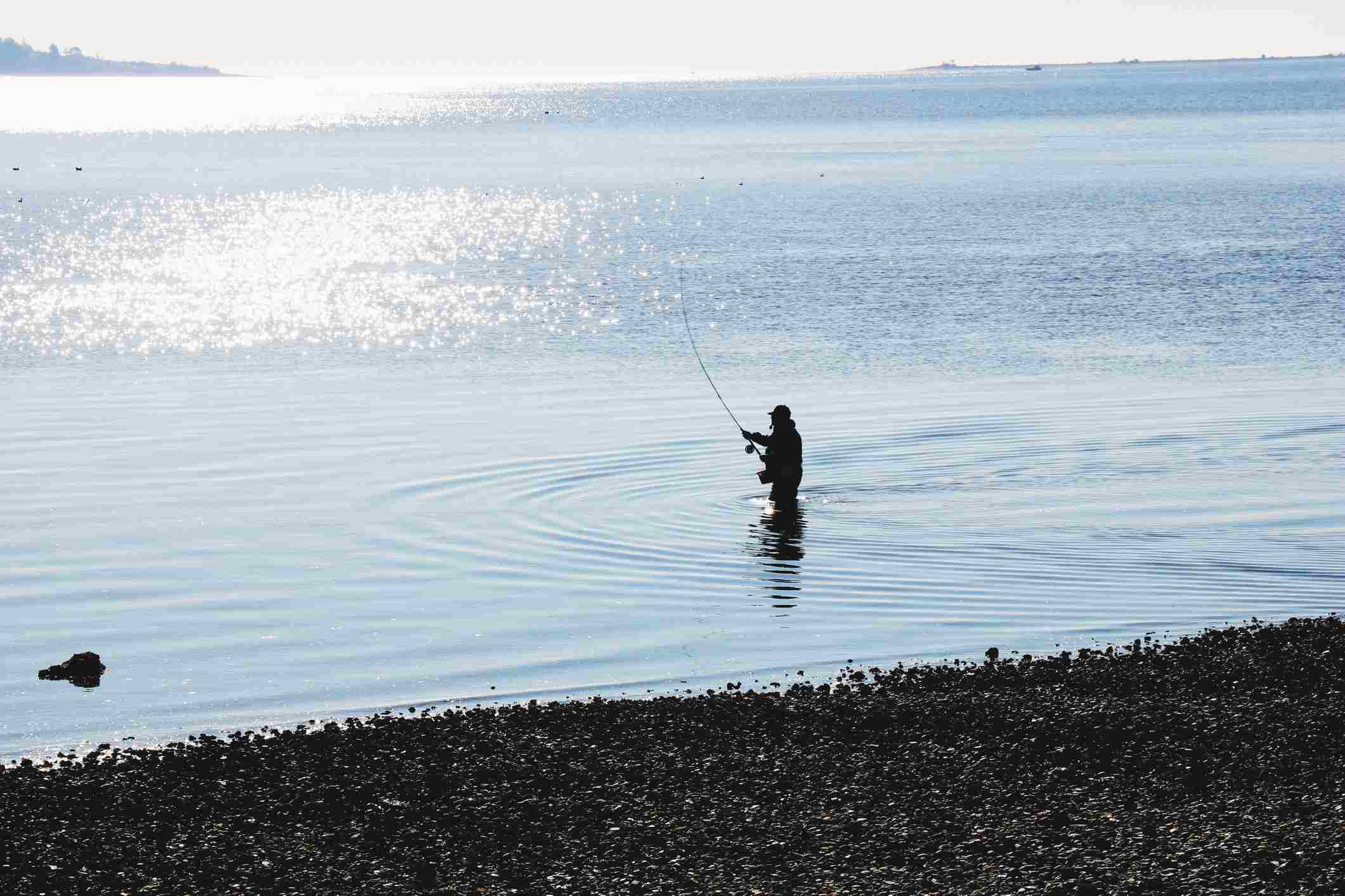 Man fishing in the water near Victoria, Canada.