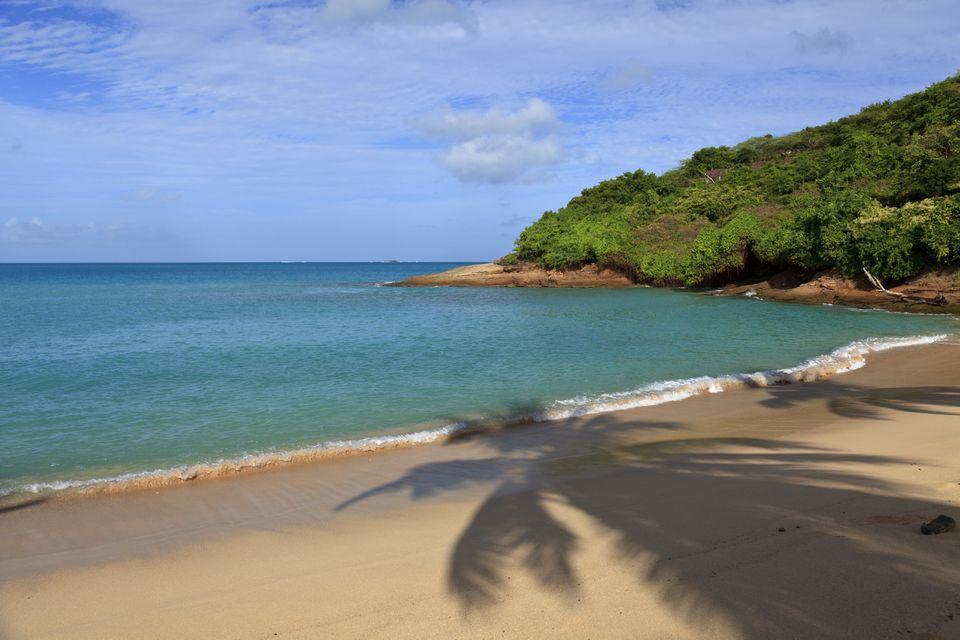 Caribbean, Antigua and Barbuda, Hawksbill Beach