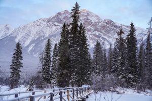 A snowy mountain Jasper