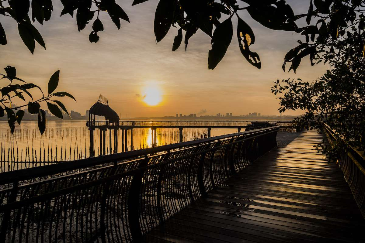 Sunset over a wetland preserve in Singapore