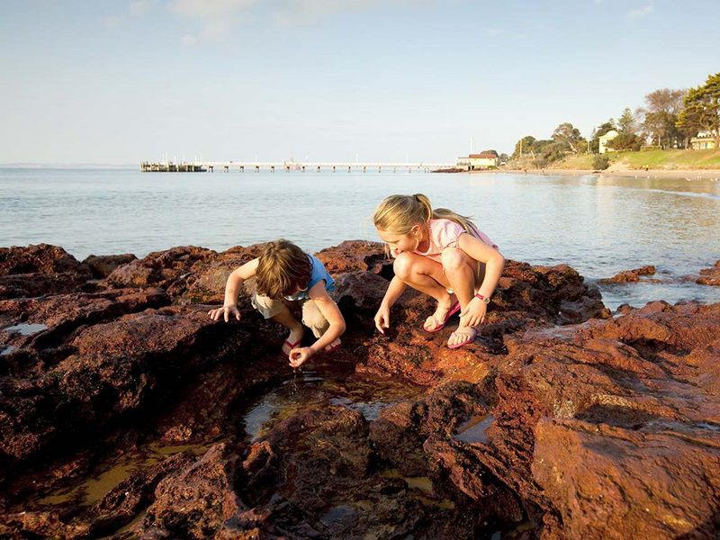 Kids can explore Victoria's rock pools any time of year.