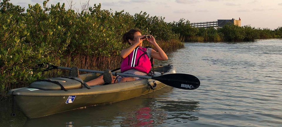 Great Texas Coastal Birding Trail