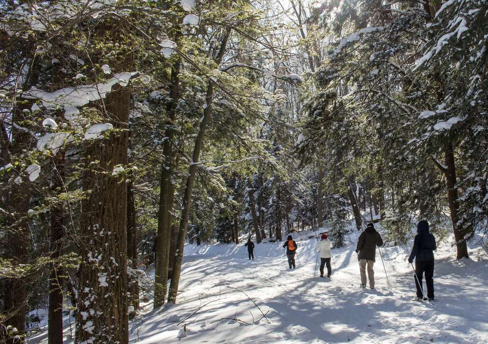A group of people cross country skiing with Venture Outdoors