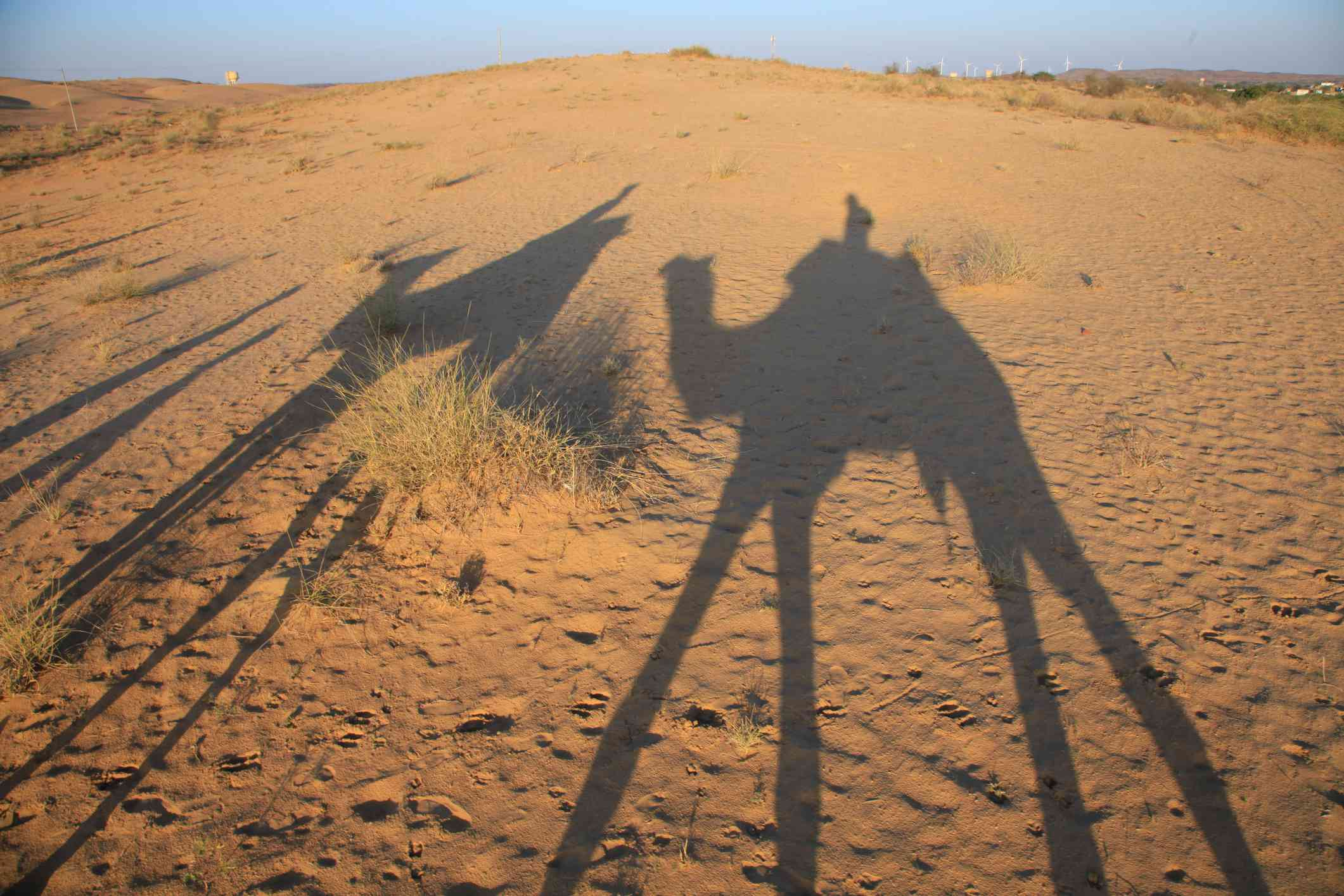 An image of a camel shadow in the sand dunes around Osian in India's Rajasthan state.