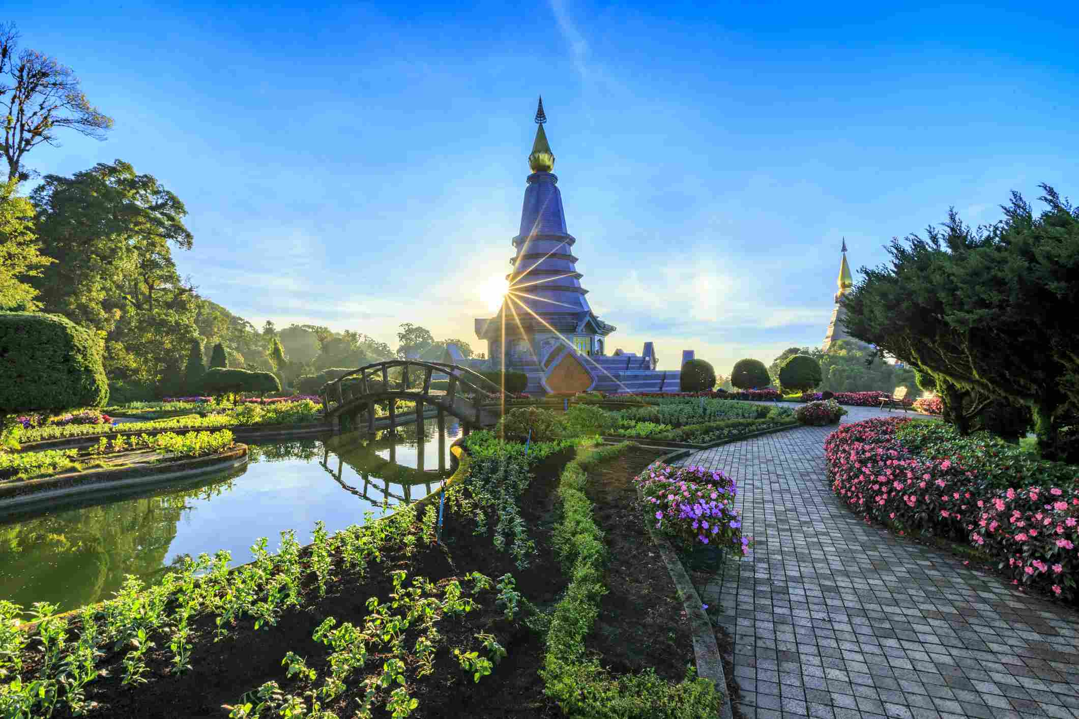 Flower park in Chiang Mai, Thailand
