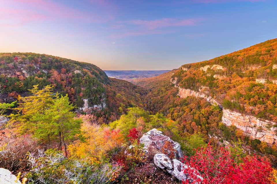 Cloudland Canyon, Georgia, USA